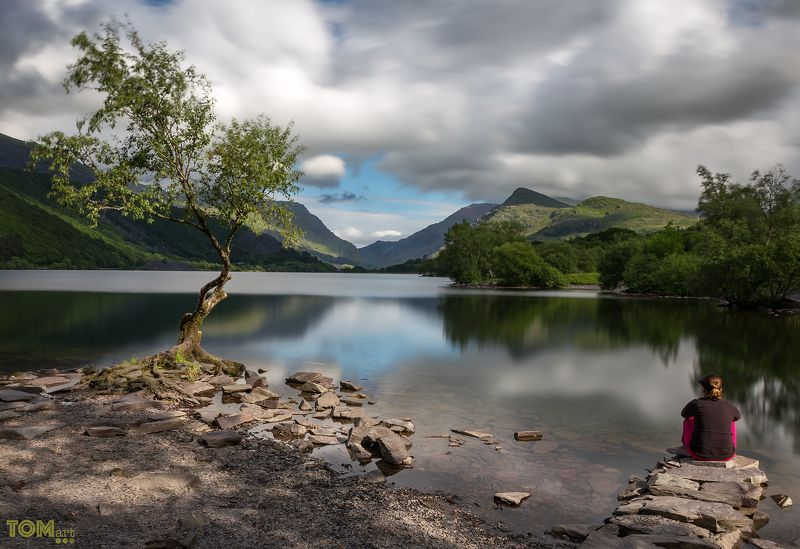 tree landscape uk united kingdom wales view water reflection nature long exposure longexpo scenery \
