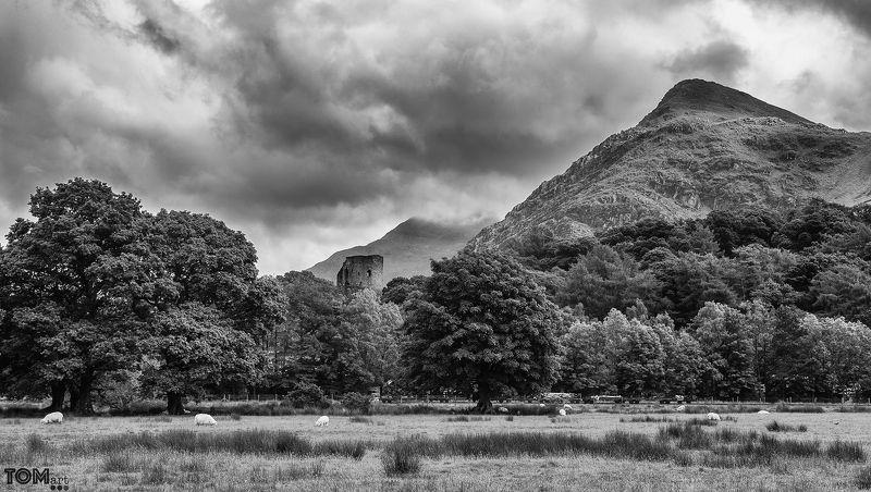sheep wales landscape photography monochrome scenery view beautiful uk sky clouds  \