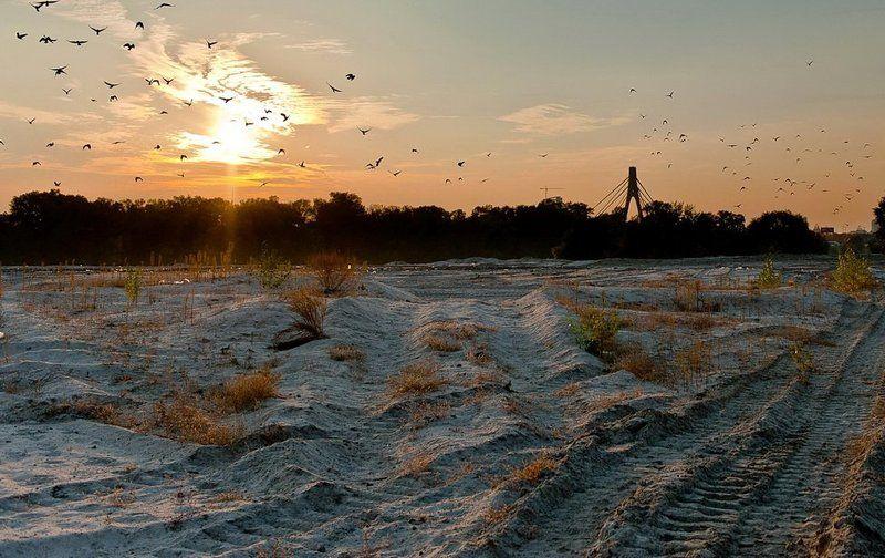 пустырь, закат, облака, песок, вороны На пустыре..photo preview