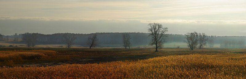 пейзаж, природа, зауралье Осеннее утроphoto preview