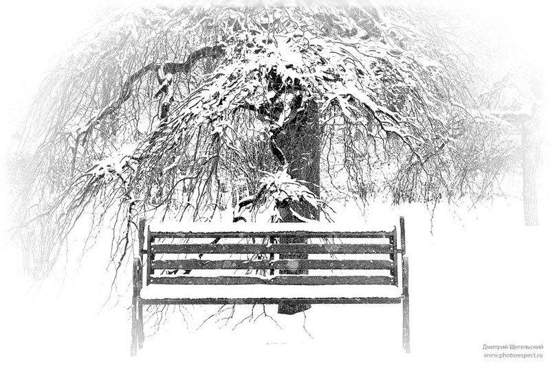 снег, скамейка, дерево Снег идет...photo preview