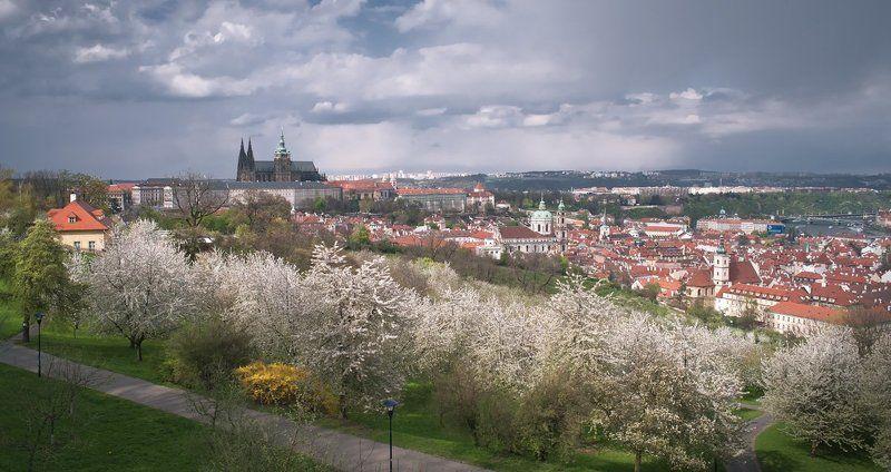 чехия,прага,весна,панорама Прага весенняяphoto preview