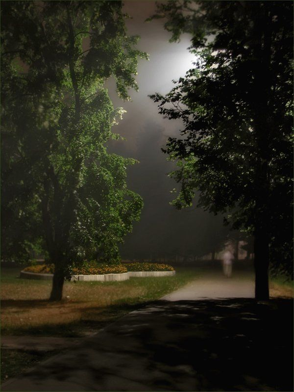 дым, ночь, парк Дым, ночь, парк..photo preview