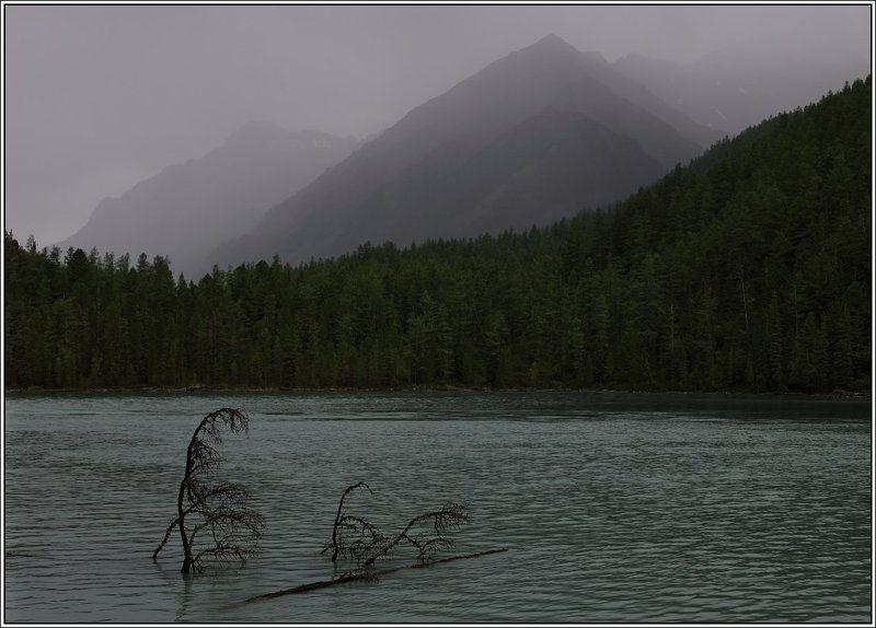 алтай, кучерлинское, озеро, горы В горах дожди, в горах седое небоphoto preview
