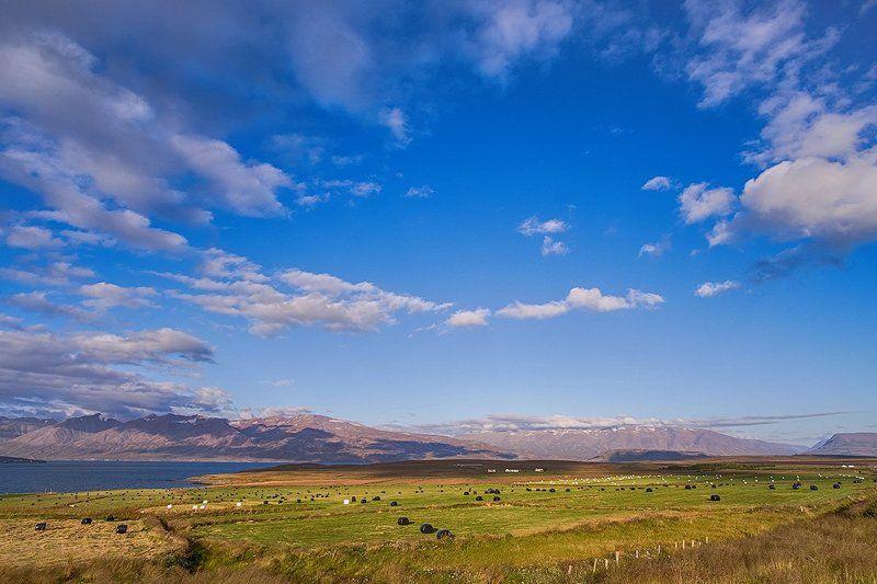 пейзаж, исландия, природа, путешествие, пастораль, лето,  iceland, landscape, trip, traveling Пасторальphoto preview