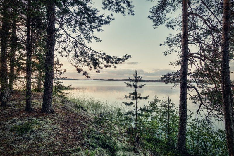 Вечер на озере Мярандукса #2photo preview