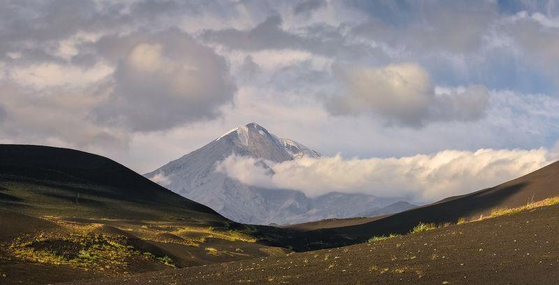 камчатка, толбачик, вулкан, лава, мёртвый лес, Толбачик и окрестностиphoto preview