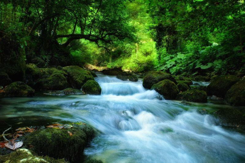 в ущелье реки Псырцхаphoto preview
