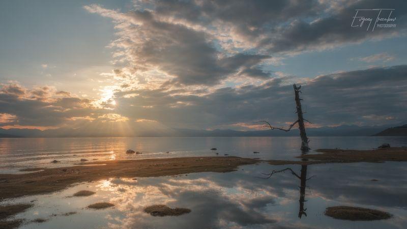 хубсугул, монголия, закат, солнце, облака, туча, дерево, озеро Закат у высохшего дереваphoto preview