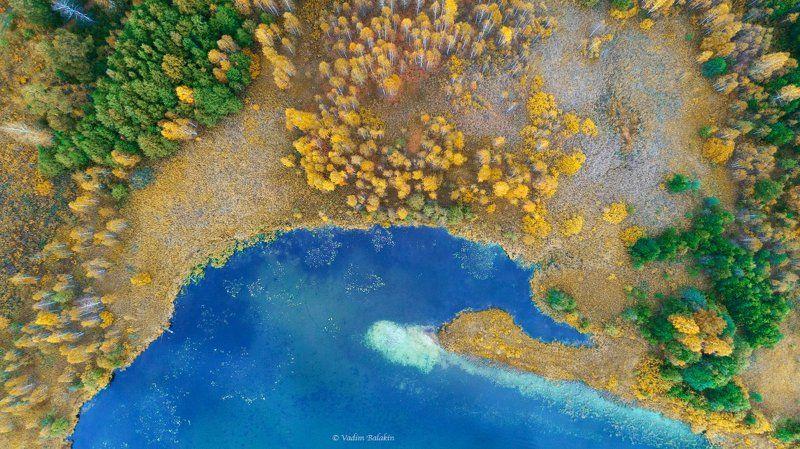 осень, средний урал, аэрофотосъемка, озеро, лес, осенний лес, урал, абстракция Осеньphoto preview