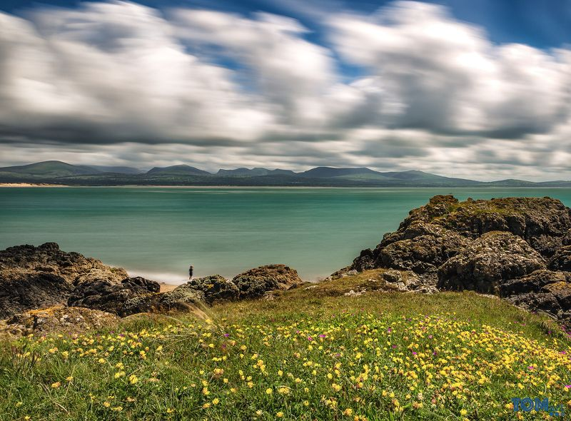 sheep wales landscape photography colour longexposure scenery view beautiful uk sky clouds \