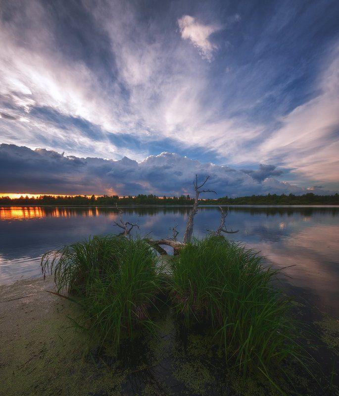 россия, подмосковье, весна, вечер, закат, озеро, небо, облака, вода, свет, солнце, деревья, трава В ожидании закатаphoto preview