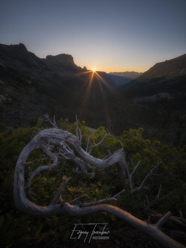 ергаки, природа, пейзаж, саяны, горы, лето, сибирь, утро, рассвет, небо, красноярск, западные саяны, скалы, деревья, лес Затаившийся драконphoto preview