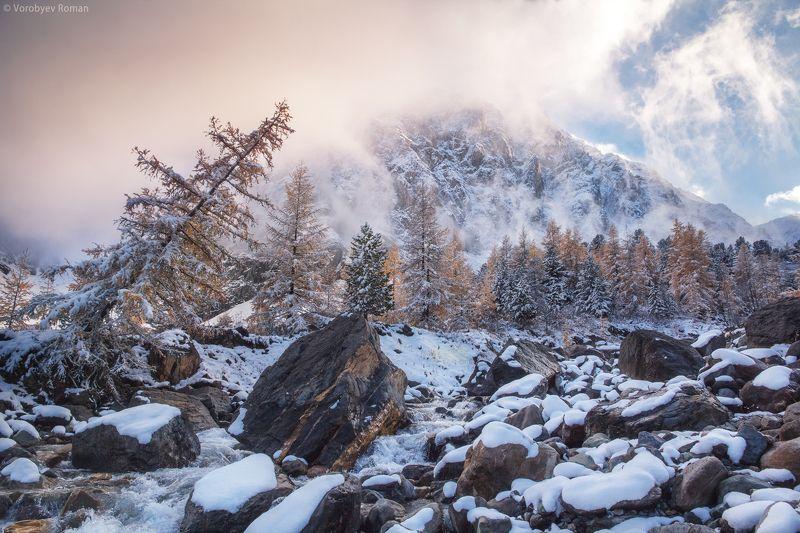 алтай, горы, снег, первый снег. горный алтай, осень. сентябрь Первый снег в Актруphoto preview