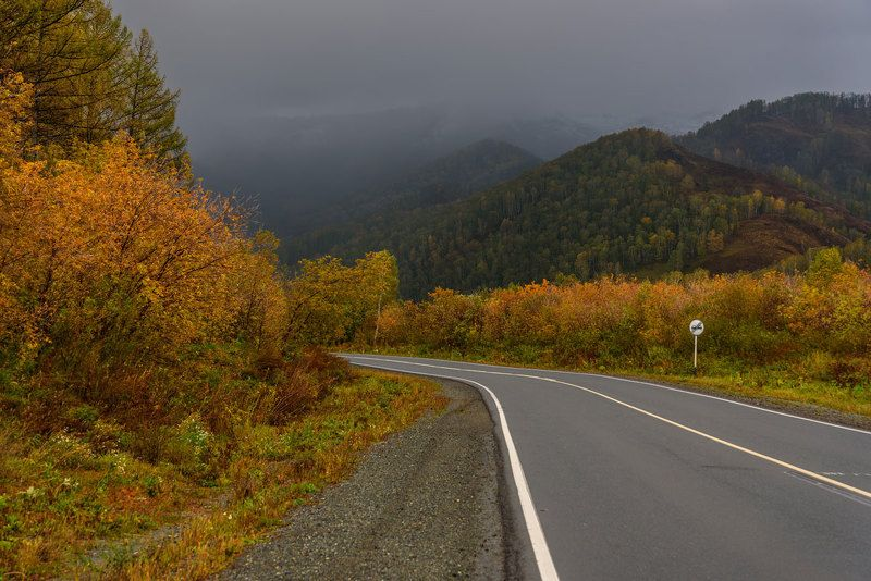 дорога, горы, дождь, осень, алтай, road, mountains, rain, autumn, altai Иду на грозу...photo preview