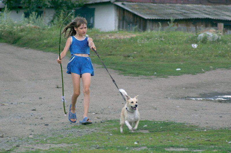 девочка, собачка photo preview