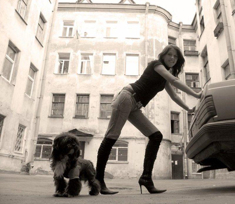 собачка, девушка Девушка....Вам помоЧЬ нужна?photo preview