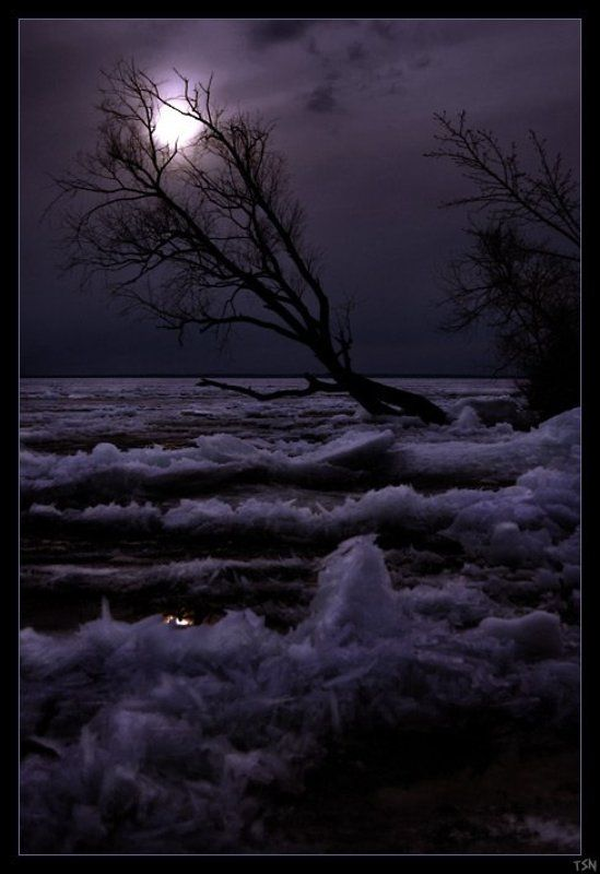 Весенняя ночьphoto preview