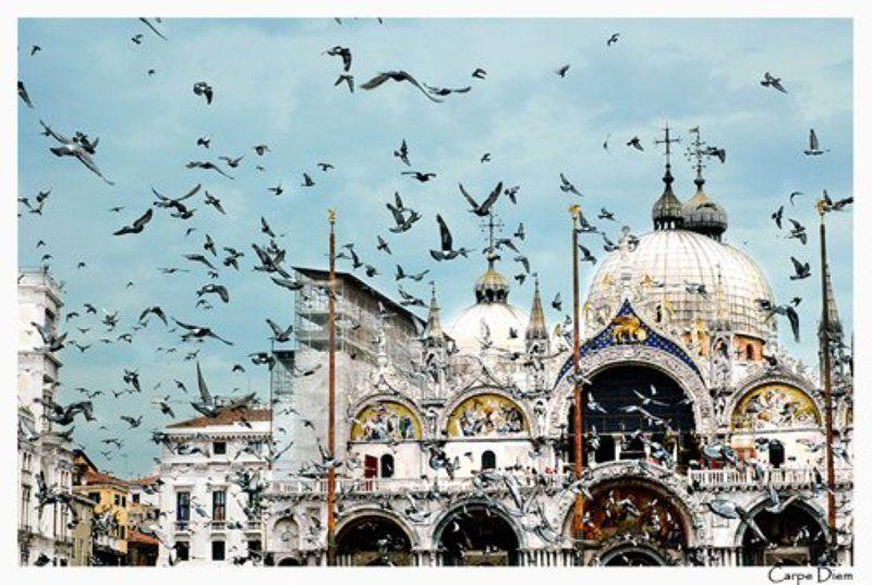 италия, венеция, площадь сан марко, голуби небо Венецииphoto preview