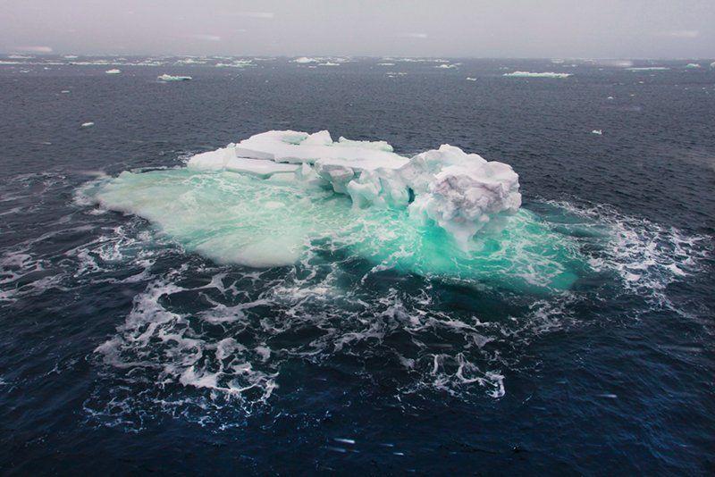 льды,карское море, зима,снег ...И ЧТО ЗА МОНСТР ЗА БОРТОМphoto preview