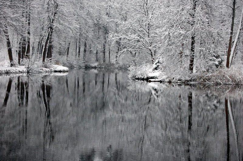 зима,снег, лес, природа, озеро. Зимние кружеваphoto preview