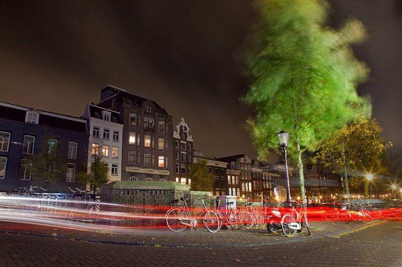 амстердам, город, свет, деревья, ветер, ночь Night movementsphoto preview