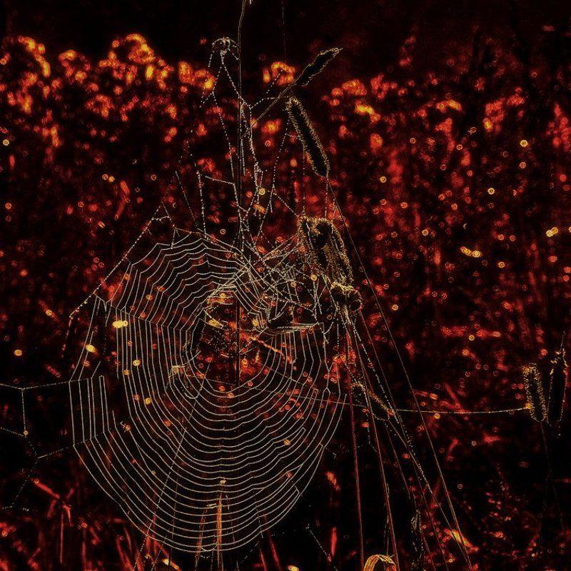 Мишень, или Три секунды до гибели Вселенной (2008)photo preview