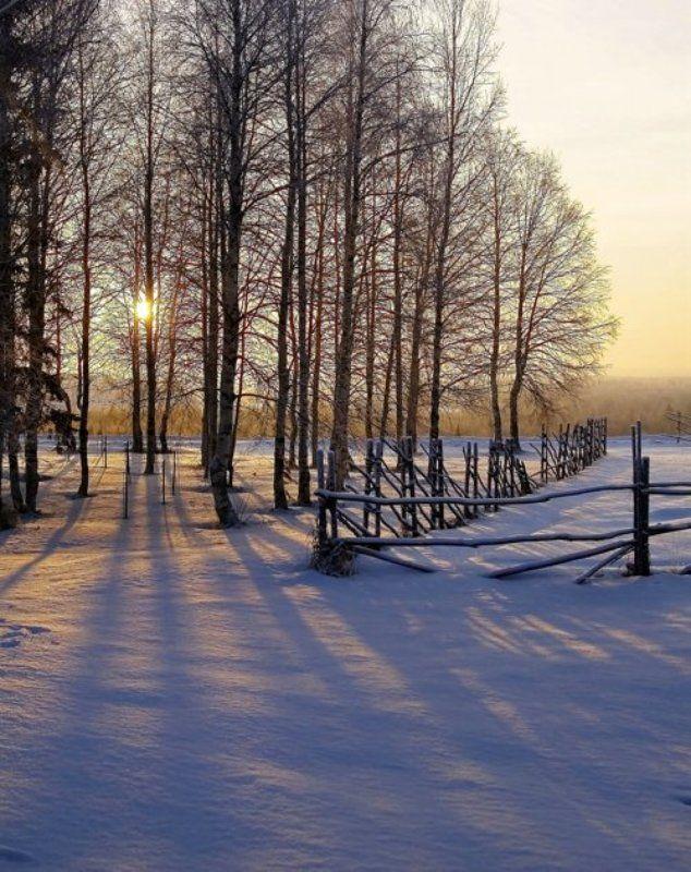 зима, снег, солнце,  тени, забор Зимний полденьphoto preview