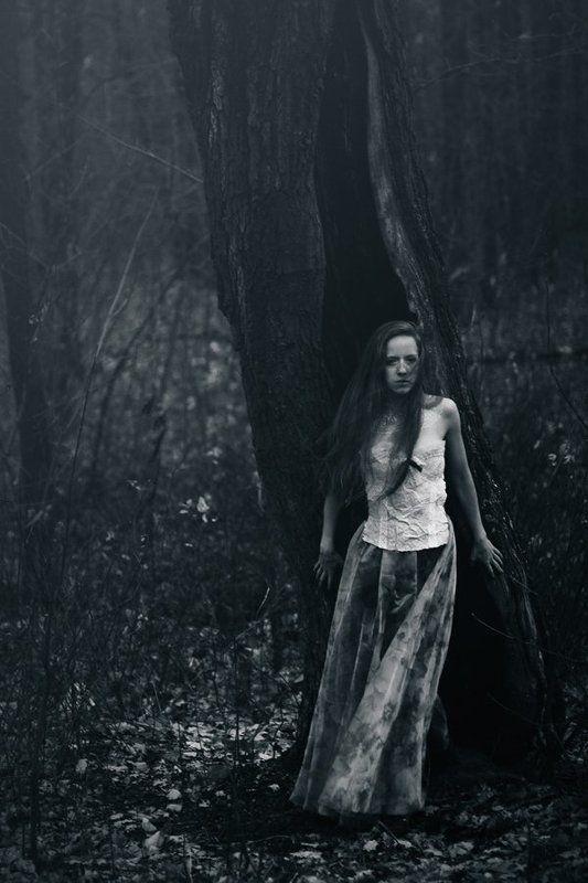 лес, девушка photo preview