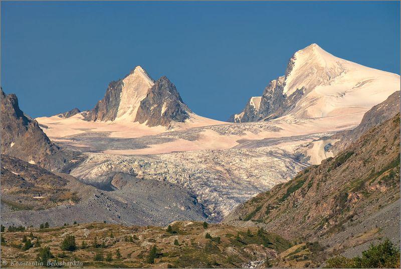 софийский ледник, алтай, утро, красный снег, хламидомонада Утро Софийского ледникаphoto preview