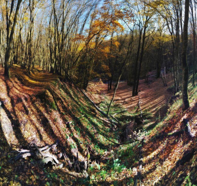 Осенние бродилкиphoto preview