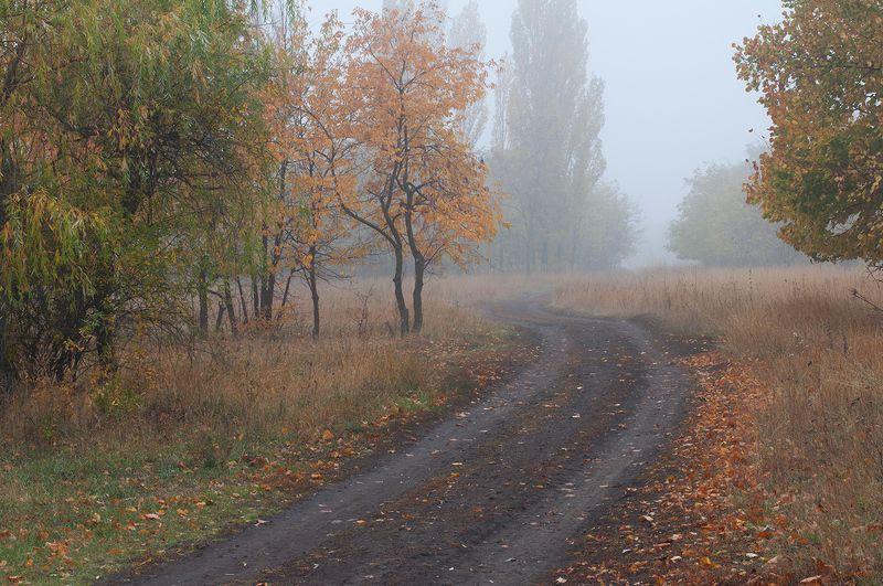 В туманную укутав шаль...photo preview