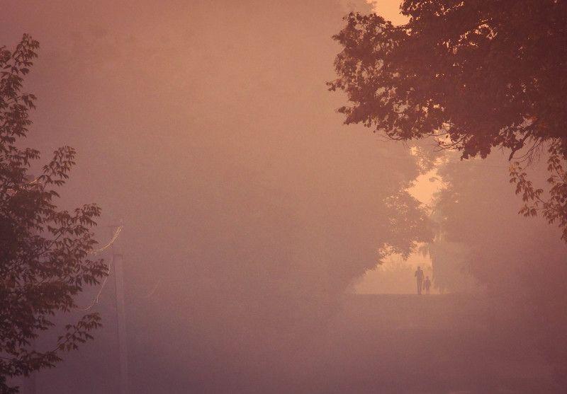 рассвет, утро, люди, деревня, детство, ребенок \
