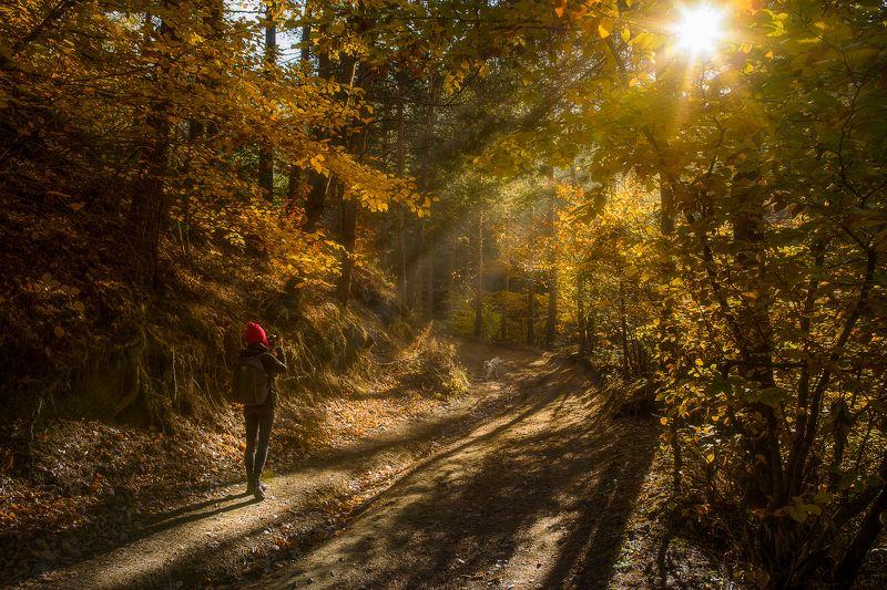 Есенна разходкаphoto preview