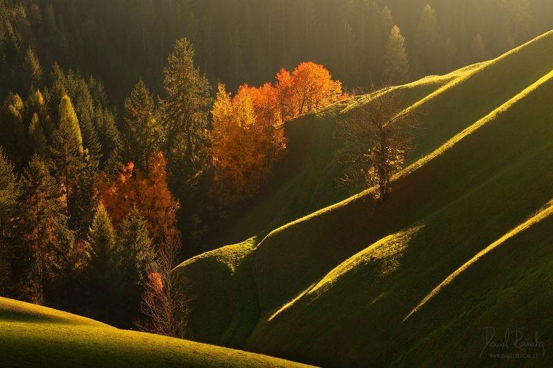 Alpen, Alps, Dolomiten, Dolomites, Dolomiti, Italia, Italien, Italy, South Tyrol, Tyrol, Alta badia, Trentino, Veneto, Beluno, Europe, daniel rericha, autumn, valleys, alpine valleys, autumn trees, meadows, waves,  Alpine autumn wavesphoto preview