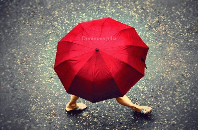 walking red umbrellaphoto preview
