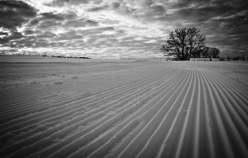 пейзаж, природа, зима ***photo preview