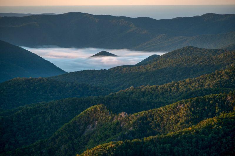 Приморский край, Приморье, Горы, Тайга, Туман Когда спящий проснётсяphoto preview