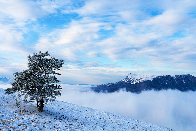 Зима наближається...photo preview