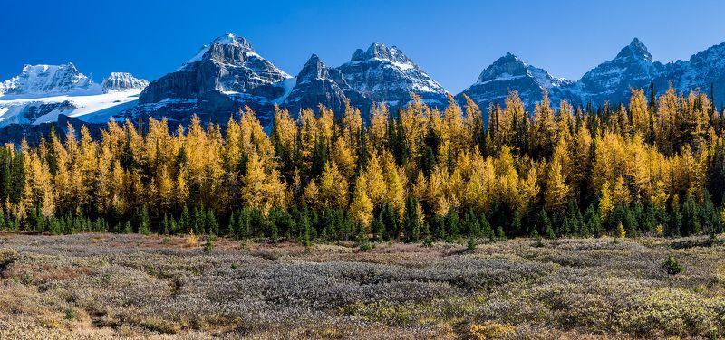 Канада, Скалистые горы, Банф, осень, пейзаж Осень в горахphoto preview