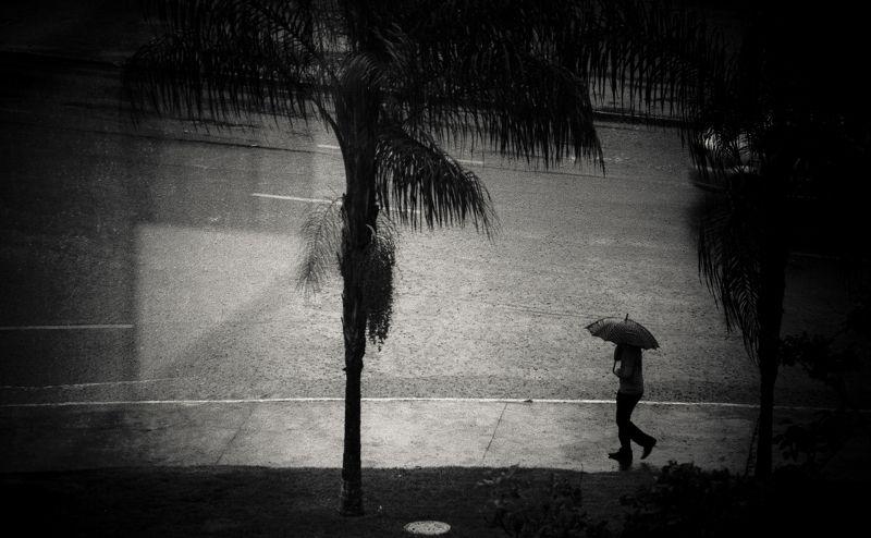 rain chuva dias de chuvaphoto preview