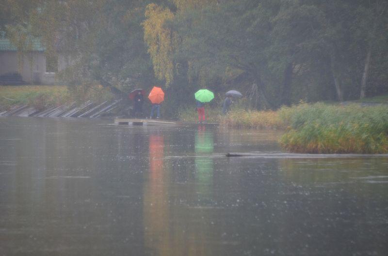 Временами местами дожди...photo preview