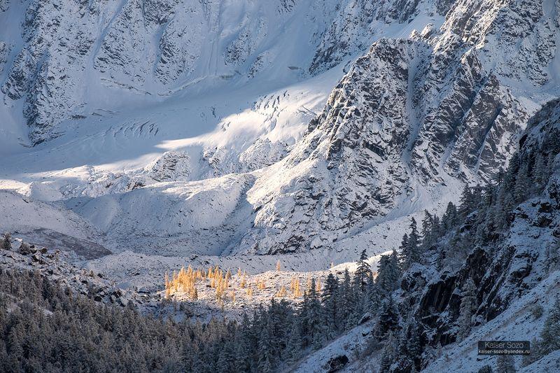 россия, алтай, горный алтай, шавла, шавлинские озера, ледник зелинского, золотая осень, лиственницы, ледник, снег, kaiser sozo Ледниковый периодphoto preview