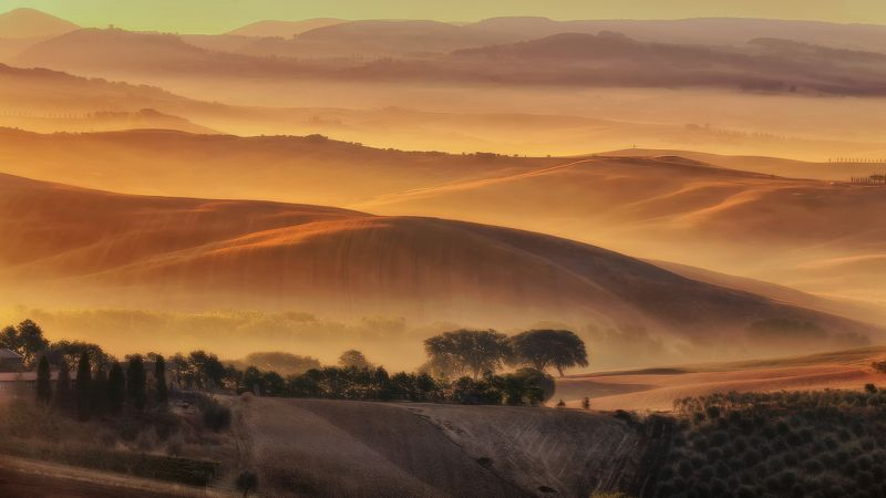 #italia #италия #тоскана Золотая Тосканаphoto preview
