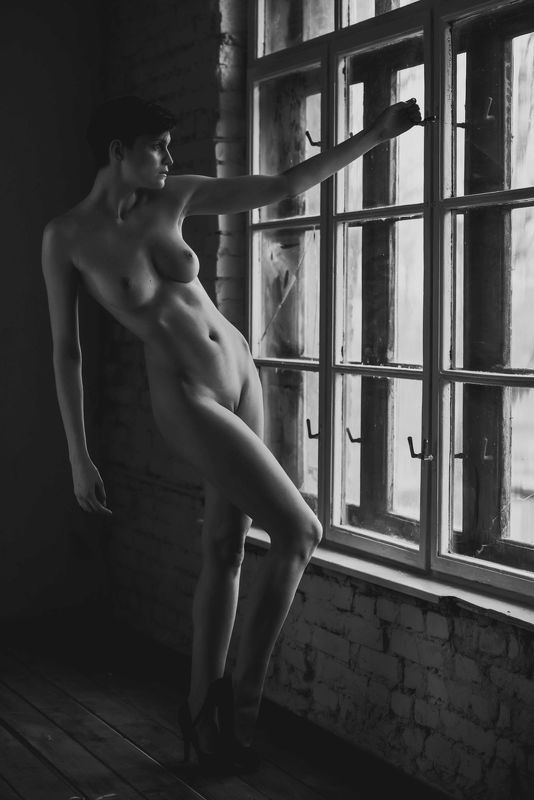 nude,beauty,black and white, sensual, natural light Windows series 1photo preview