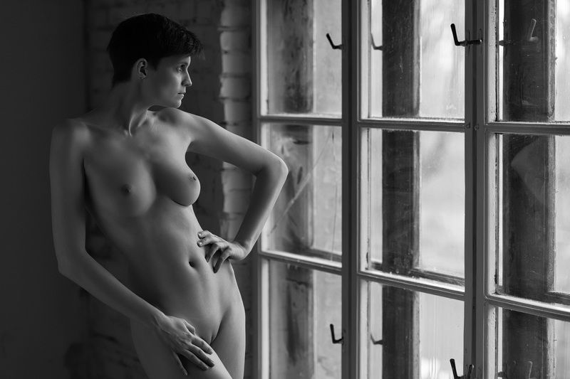 nude,beauty,black and white, sensual, natural light Windows series 3photo preview