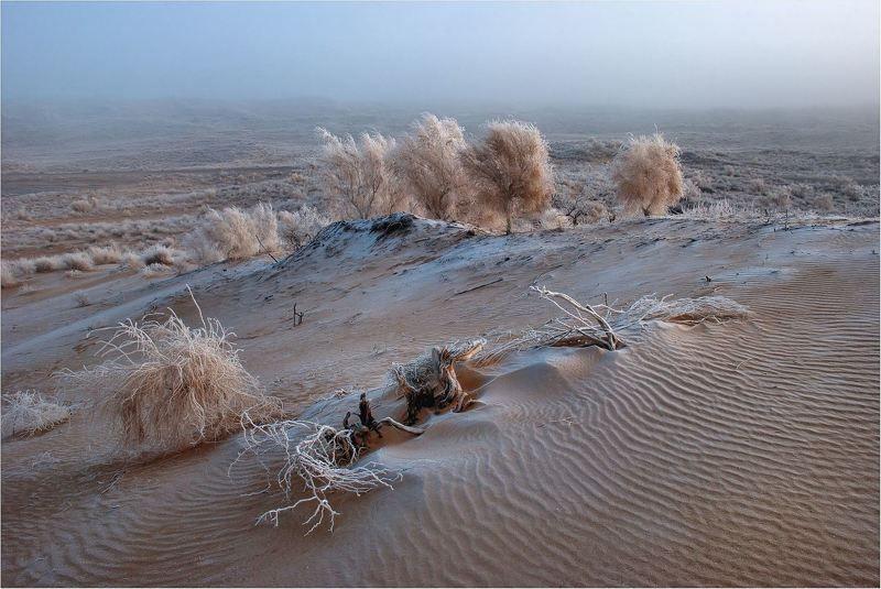 природа Без цивилизации....photo preview