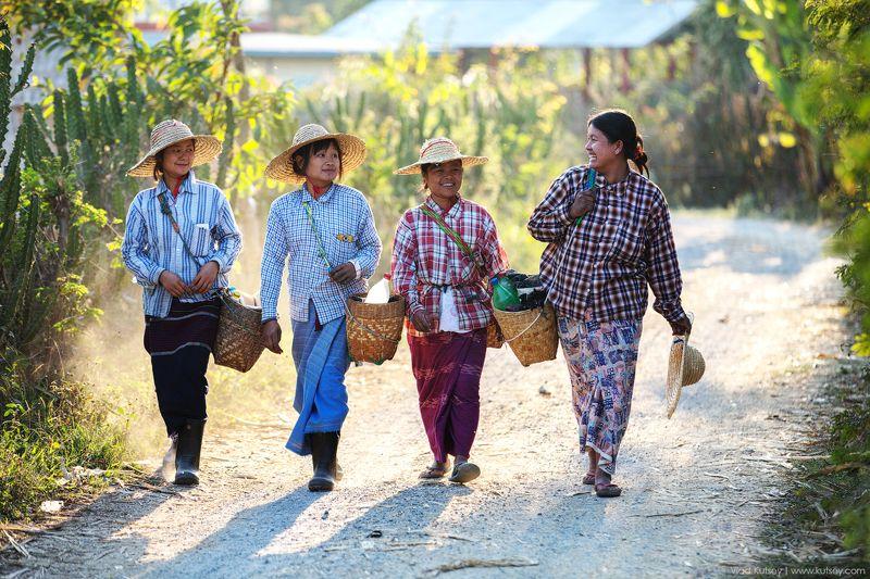 бирма,девушки,дорога,путь,улыбки,мьянма,Myanmar,Burma Дорога домой (Мьянма)photo preview