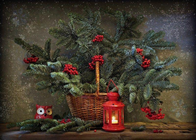 зима новый год елка праздник С Наступающим Новым годом!photo preview