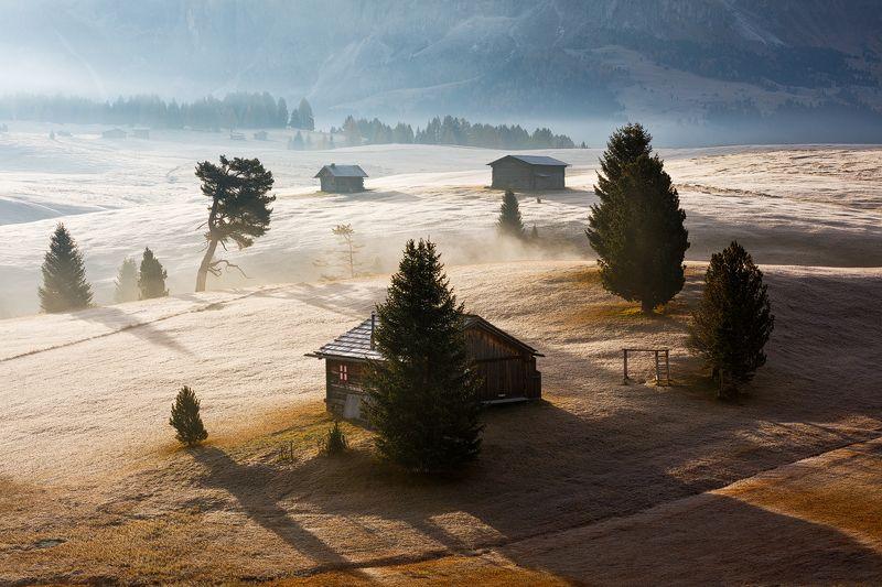 light, fog, mist, italy, mountains, trees, dolomites, mood, alps, autumn, fall, hut, chalet, landscape, nature Light & Fogphoto preview